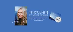 Mindfulness - Ditt ubrukte potensiale